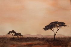 the accaia tree and big sky of South Africa