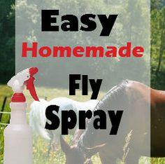 easy homemade fly spray for horses- apple cider vinegar