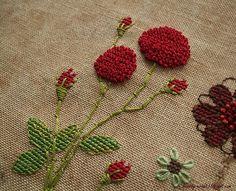 Pressed Red Flowers