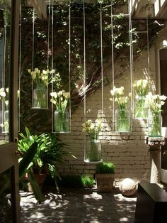 My Sparrow-stylish responsibility: Hanging Tulips..