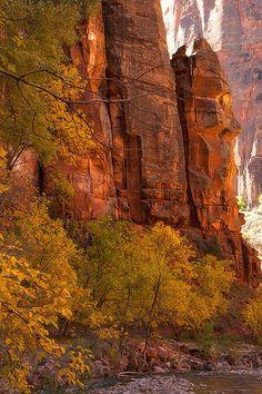 Zion by Angela King-Jones, via 500px; Zion National Park, Utah
