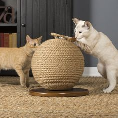 PRICE INCLUDES SHIPPING TO US ADDRESSES Here's a totally unique cat scratcher that both you and your cat will love! The Kitty Power Paws Scratching Sphere from