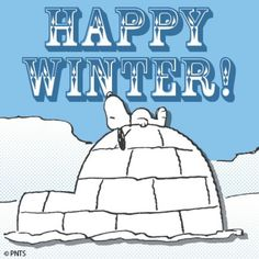 Happy Winter    <3 SnOOpy