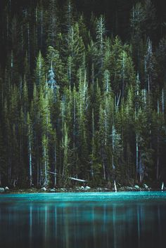 The best Lightroom Presets for Landscape, Nature & Travel Photography travel forest 29 Products / 463 Lightroom Presets for Landscape & Travel Photography (Shop Bundle) Travel Photography Tumblr, Photography Beach, Photography Tips, Landscape Photography, Aerial Photography, Landscape Photos, Beautiful Nature Photography, Mysterious Photography, Photography Gloves