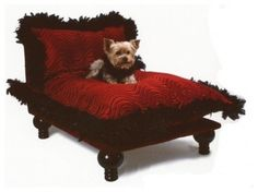 The Well Appointed House by Melissa Hawks. Celebrity Dog Bed from The Well Appointed House. Unique Dog Beds, Cute Dog Beds, Diy Dog Bed, Pet Beds, Doggie Beds, Celebrity Dogs, Dog Furniture, Dog Houses, Dog Supplies