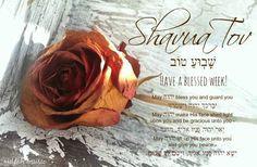 Shavua Tov