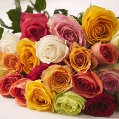 Dress up your DIY wedding flowers with premium varieties of fresh cut roses from The Grower's Box! These fresh cut roses are shipped from growing regions in Colombia and Ecuador directly to your door via overnight courier! FREE Shipping!