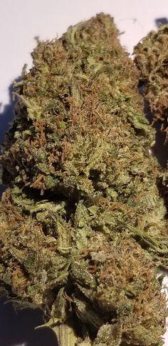 Pin on smoker isle cbd flower buds