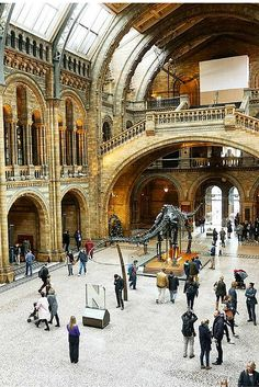 10 reasons why winter is the best time to visit London. The city looks beautiful during the fall and winter months and it's a great way to save money and enjoy the holiday festivities. The Museum of Natural History has beautiful architecture and it's free to visit.