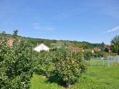 auf dem Weg nach Bötzingen