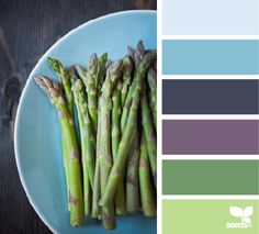 asparagus hues for a dining room or living room Paint Color Palettes, Colour Pallette, Color Palate, Colour Schemes, Color Trends, Color Combos, Pantone, Color Harmony, Design Seeds