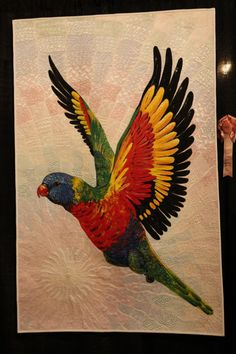 IQF 2012  Rainbow Lorikeet.  by Helen Godden Latham, Australia, Hand Painted, Free Motion Machine Quilting