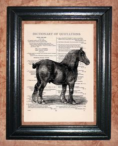 Percheron Draft Horse Dictionary Page Art Print    Vintage Dictionary book - Dictionary Page Art, Upcycled Art Print.  I use pages from this book to