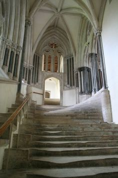 Cathedral Church of St. Andrew/Wells Cathedral, Chapter House stairs, ca. 1320 by Holly Hayes