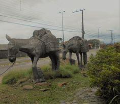Elephant, Animals, City, Animales, Animaux, Elephants, Animal, Animais
