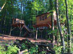 Tree House Hotel – Baumhotel Robins Nest – Hessen, Germany