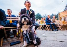 Cute dog wear wedding suit for winter wedding at Voewood wedding by Parrot and Pineapple Photography. Click to see more from this wedding. Cat Wedding, Wedding Wishes, Wedding Looks, Wedding Suits, Honeymoon Planning, Wedding Planning Tips, Huge Dogs, Wedding Photographer London, Getting A Puppy