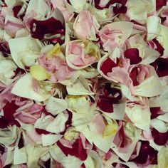 Coni di riso e petali di rose #Event_ualmente #weddingplanner #matrimonio #Lecco