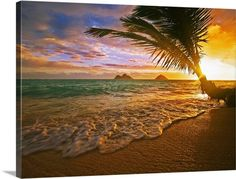 """Hawaii, Oahu, Lanikai Beach At Sunrise"" Wall Art by Tomas Del Amo via @greatbigcanvas available at GreatBIGCanvas.com."