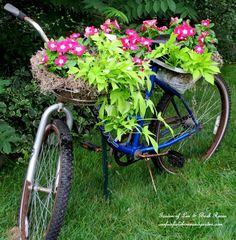 EM UM JARDIM UMA BICICLETA É SEMPRE BEMVINDA!!! http://ourfairfieldhomeandgarden.com/diy-project-my-bicycle-planter/