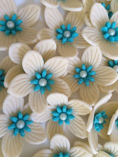 36 Ivory turquoise edible fondant flowers Hawaiian tropical cupcake cake toppers rose decoration wedding Easter by Inscribinglives by InscribingLives (16.99 USD) http://ift.tt/1R2UwNu