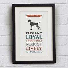 hungarian vizsla dog breed traits print by well bred design   notonthehighstreet.com