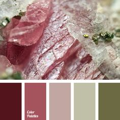Color Palette #2784