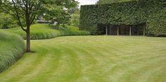 Miscanthus Gracillimus, J. Wirtz Landscape Architects