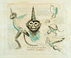 secret fauna by Joan Fontcuberta and Pere Formiguera