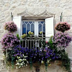 "French window. OH"" I'd love to emulate this. LUSH"