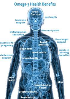 Omega 3s for optimal health!