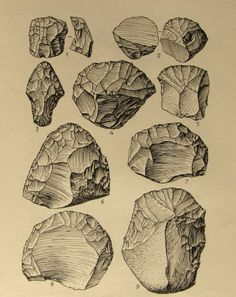 the TYPOLOGIST : collector of collections Stone tools