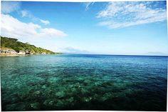 Menjangan dans la régence de Buleleng (nord) à Bali en Indonésie.