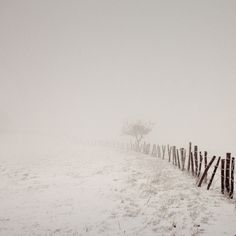 Winter Scapes by Francois Cayla