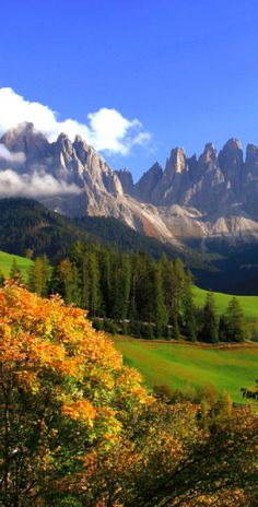 Autumn in the Val di Funes of northern Italy • photo: Marco Corriero on Flickr