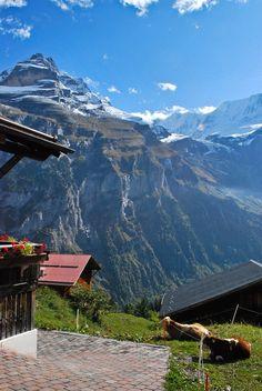 Mönch & Jungfrau Peaks | Grindelwald, Lauterbrunnen, Switzerland