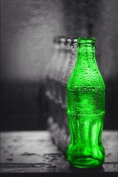 Green Splash of Color Splash Photography, Color Photography, Black And White Photography, Black And White Colour, Black And White Pictures, White Art, Color Of Life, One Color, Color Pop