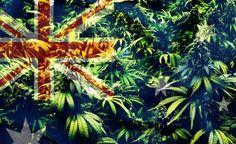 Australia Finally Decides: Marijuana Should Be Legal!