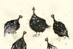 A Rasp of Guinea Fowl