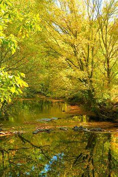 Owens Creek near Thurmont, Maryland by Steven Ainsworth