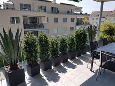 Sidewalk, Indoor, Patio, Outdoor Decor, Bff, Gardening, Home Decor, Shopping, Balconies