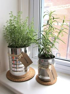 Recycle large metal cans (could use old mugs too) to create a stylish herb garden for your kitchen