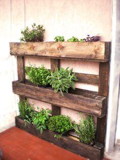 http://inaartscreations.blogspot.it/2012/04/my-balcony-eco-recycle-garden.html