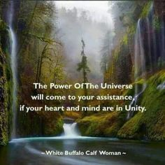 White Buffalo Calf Woman: The power of the Universe . Native American Spirituality, Native American Wisdom, Indian Spirituality, American Indians, American Symbols, American Indian Quotes, American Art, American Women, American History