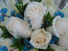 Bridal bouquet with cream Vendela roses, Myrtle greenery, white Oriental lilies, turquoise corsage pins, turquoise baby Cosmos silk accent flowers, white Calla Lilies