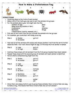This week I'm sharing a packet of materials on using and making dichotomous keys. You'll find a page of informational text, directions f. Science Memes, Science Biology, Science Lessons, Teaching Science, Science Education, Life Science, Free Teaching Resources, Teacher Resources, Primary Resources