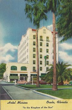 Hotel Marion, Ocala, Florida Ocala Florida, State Of Florida, Vintage Florida, Sunshine State, Vintage Postcards, Puerto Rico, Waiting, Hotels, Places