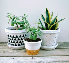 Duct Tape Planters Easy DIY