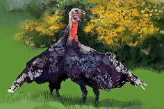 """""""Turkeys"""" #iPadArt by Susan Murtaugh #MobileDigitalArt #iPadPainting"""