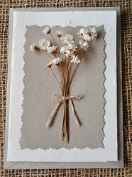 Mexican Daisy - Plantable Greeting Card